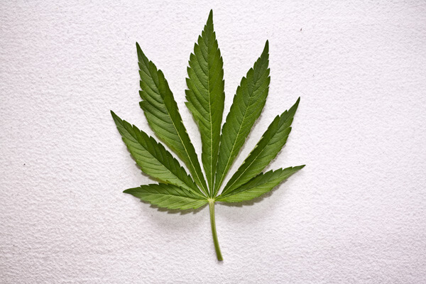 Drogenprävention