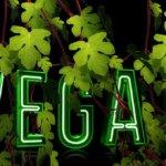 Végétariens ou végans: plus vertueux que la normale?